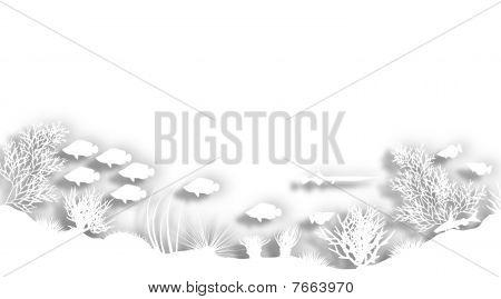 White Reef