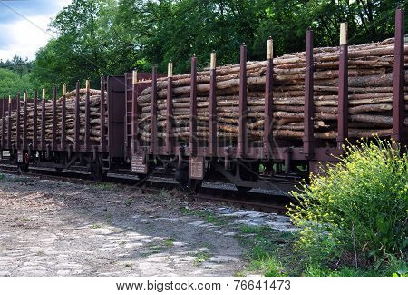 view of railway wagons and wood