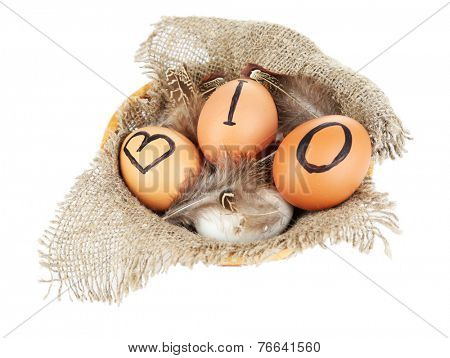 Eggs with inscription BIO on eggshell, isolated on white