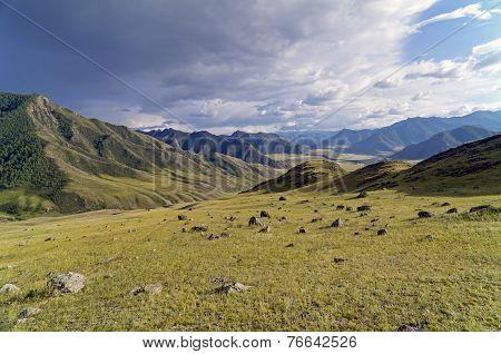 The Stones On The Hillside.  Altai, Russia.