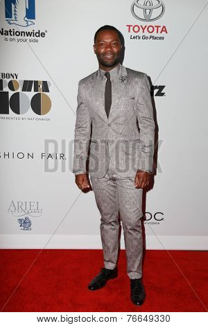LOS ANGELES - NOV 19:  David Oyelowo at the Ebony Power 100 Gala at the Avalon on November 19, 2014 in Los Angeles, CA