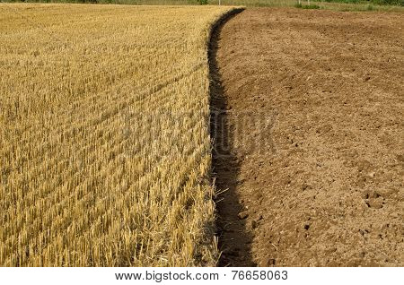 Straw Stubble And Cultivated Earth Soil On Farm Field