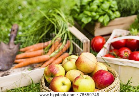 Apples And Vegetables