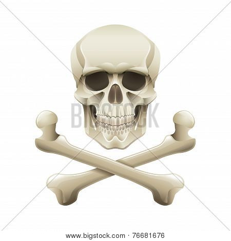 Skull And Crossbones Isolated On White Vector