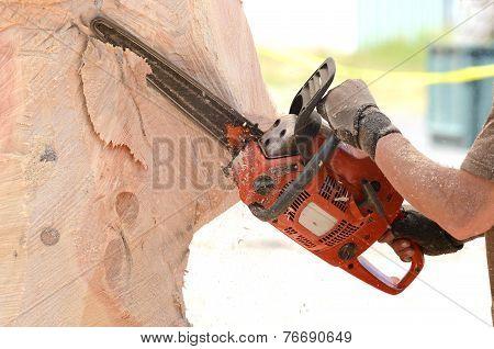 Chainsaw Sculpture