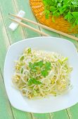 stock photo of soybean sprouts  - salad with bean sprouts on the plate - JPG
