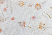 pic of mulberry  - Mulberry paper with dry flower texture background - JPG