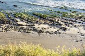 stock photo of tide  - Low tide in Santa Barbara - JPG