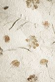 foto of mulberry  - Mulberry paper with dry flower texture background - JPG