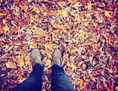 stock photo of fall day  -  feet during fall when the leaves are turning colors toned with a retro vintage instagram filter effect - JPG