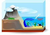picture of nutrients  - upwelling currents bring cold - JPG