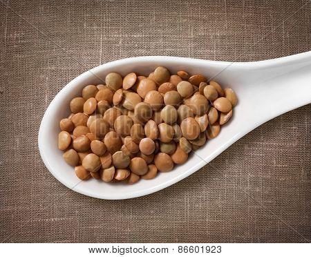 Lentil In White Porcelain Spoon / High-res Photo Of Grain In White Porcelain Spoon On Burlap Sackclo