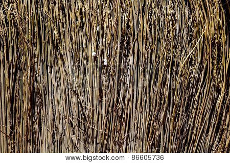 The texture of straw
