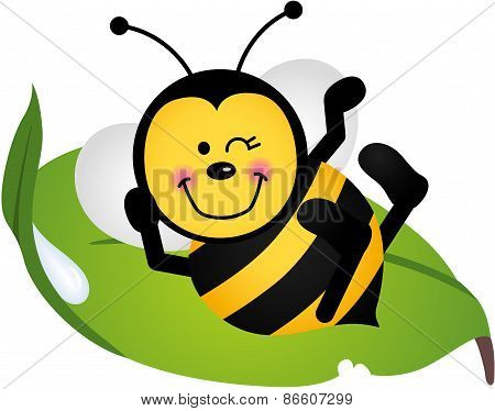 Cute bee sitting on a green leaf