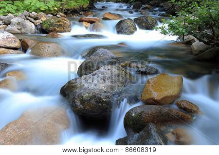 Mountain Stream, Ayder Plateau , Rize, Turkey