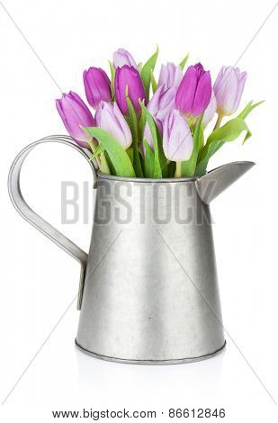 Purple tulip bouquet in watering can. Isolated on white background