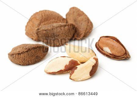 Brasil Nuts