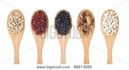 Different Sorts Of Beans On Wooden Spoon