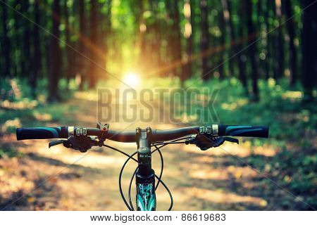 Mountain biking down hill descending fast on bicycle. View from bikers eyes. Image ID: 251873872