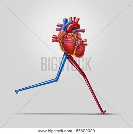 Heart Fitness