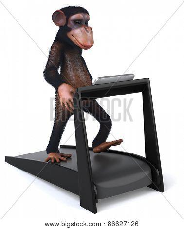 Fun monkey