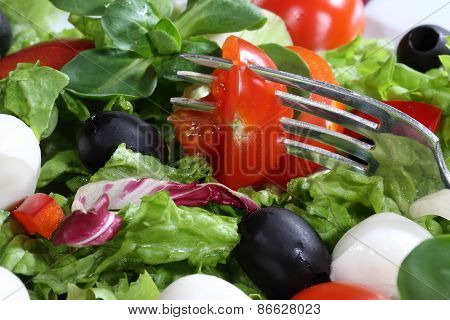 Tomato Pinned On A Plug In Salad From A Mozzarella, Tomatoes, Olives And Pepper