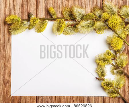 Willow Catkin On The Old Wooden Table And Paper Blank
