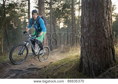 Mountain biker cycling over an off road trail through the woods in the late afternoon
