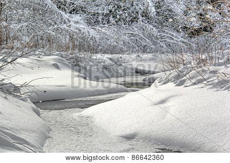 Winter Stream 423