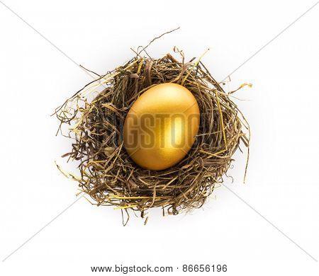 Golden egg with nest