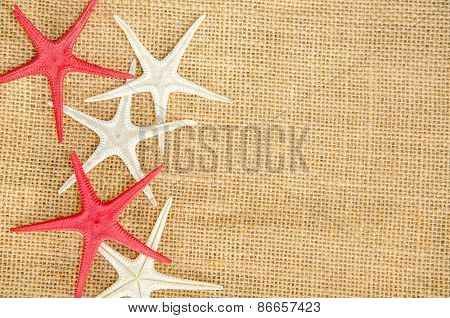 Star Fish On Light Natural Linen Texture