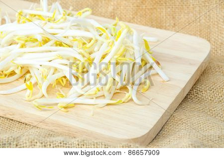 Mung Beans Or Bean Sprouts.