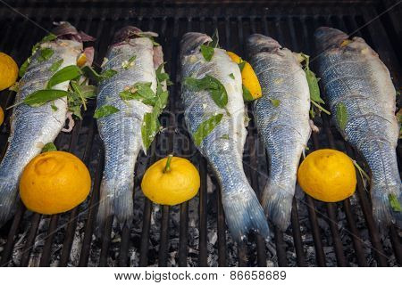 grilled organic whole fish seabass