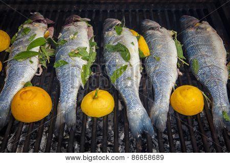 grilled organic whole fish seabass