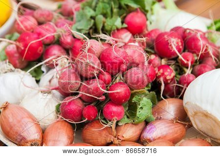 organic fresh vegetables for healthy vegan diet