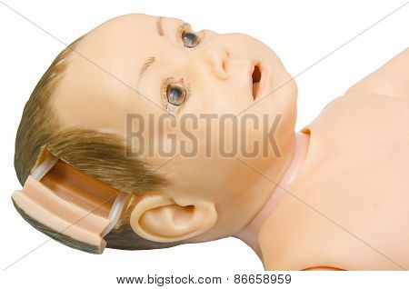 Open Part Head Of Baby Anatomy. Training Model For Students Studying Medicine.