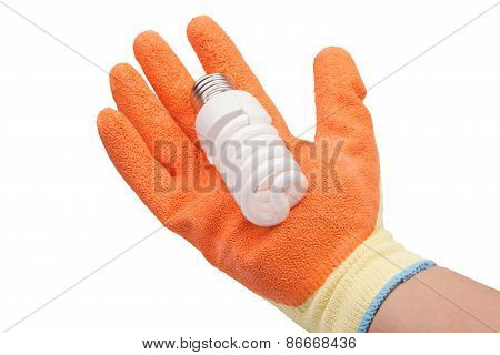 Hand In Glove Holding Energy Saving Lamp On A White Background