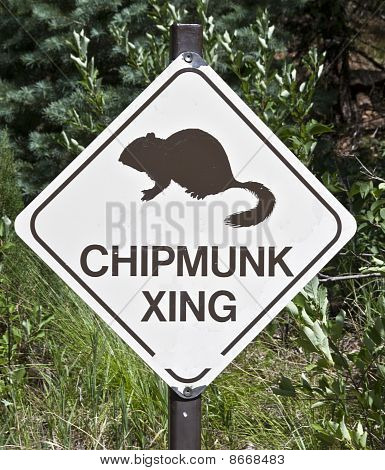Chipmunk Crossing