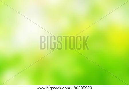 Spring Green Background Blur