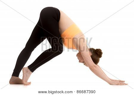 Preparation For Adho Mukha Svanasana Yoga Pose For Beginner