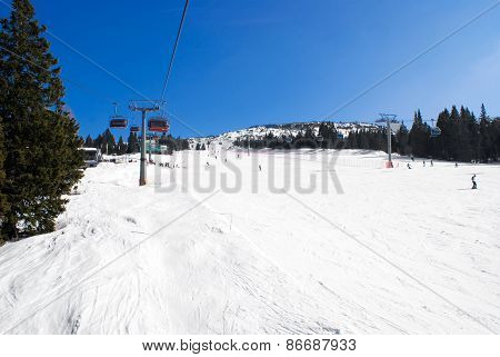 Alpine Ski Run