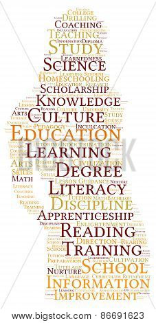 Woman Shaped Education Word Cloud