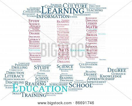 America Top Hat Shaped Education Word Cloud