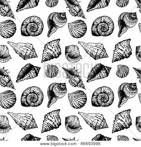 Hand drawn seamless pattern with various seashells