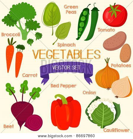 Tasty Vegetables In Bright Set. Spinach, Broccoli, Carrots, Beet, Pepper, Cauliflower, Potatoes, Oni
