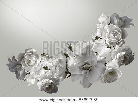 Beautiful  Horizontal Frame With A Bouquet Of White Roses  With Rain Drops. Black And White Toning I
