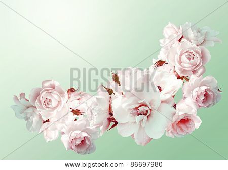 Beautiful  Horizontal Frame With A Bouquet Of White Roses  With Rain Drops. Vintage Toning Image.