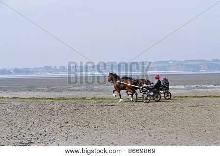 Harness Racing On The Brittany Coast