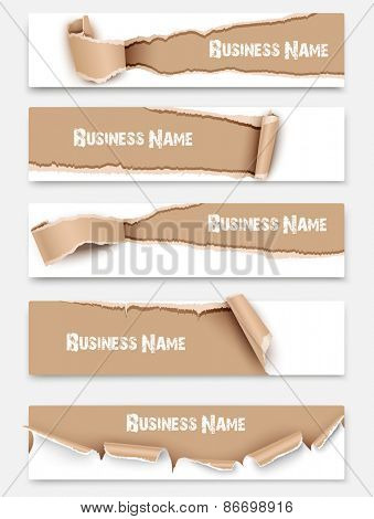 Collection torn paper banners isolated. Vector illustration