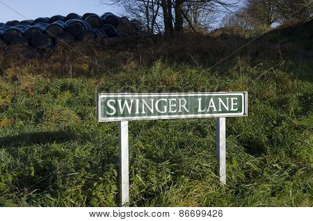 Swinger Lane